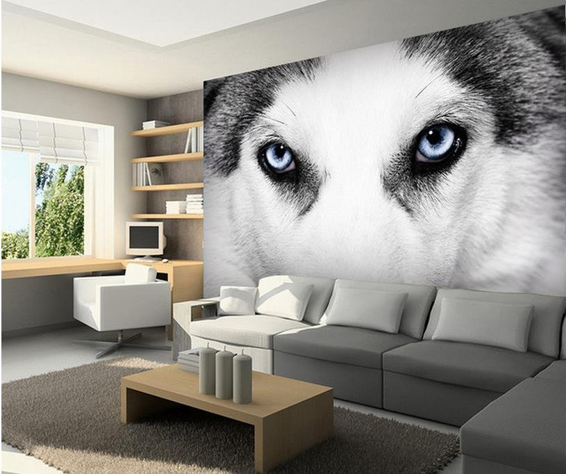 photo murale husky